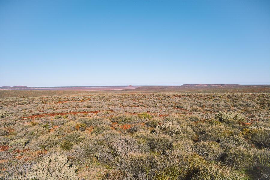 Landschaft im Australischen Outback