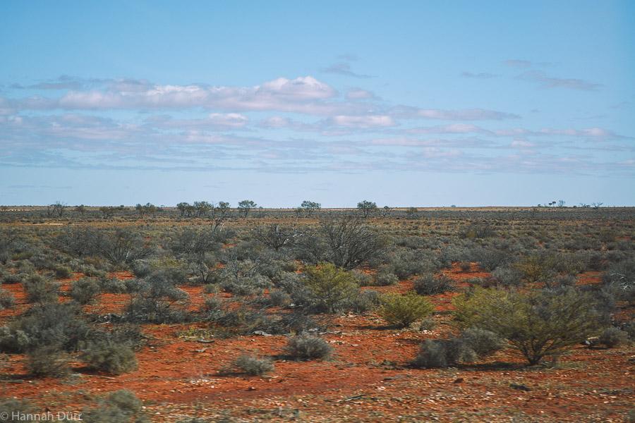 Landschaft im Outback in Australien - Roadtrip Aussicht