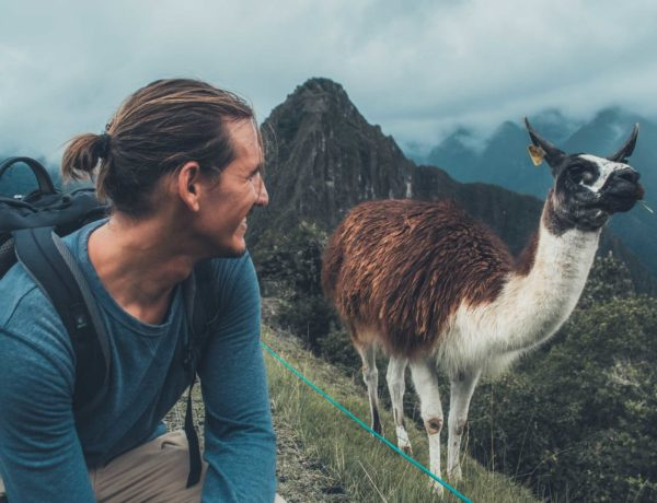 Peru Reisekosten - Adrian mit Lama am Machu Picchu