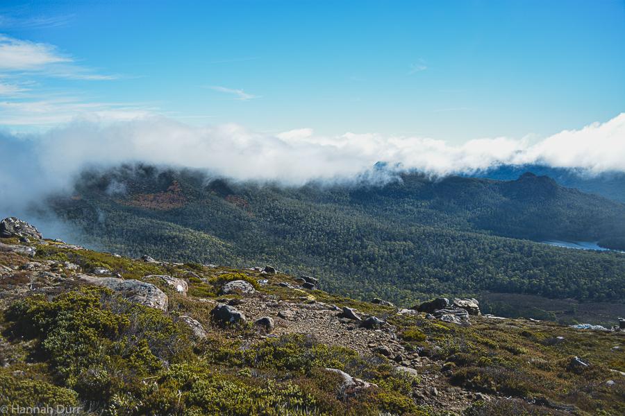 Schöne Aussicht vom Mount Rufus in Tasmanien