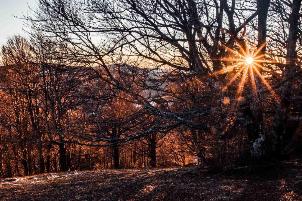 Bild: Sonnenuntergang am Schauinsland