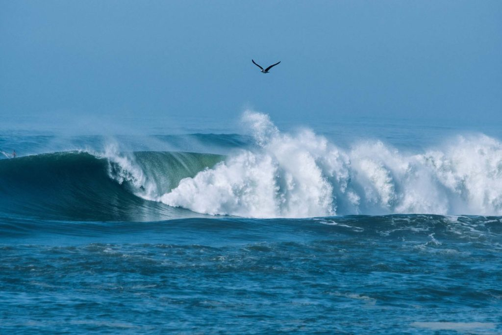 Winter Swell: große Wellen in Hossegor